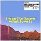 I Want To Know What Love Is (BLOND:ISH Sunrise Jungle Extended Rework) de Foreigner