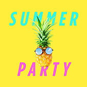 Summer Party van Various Artists