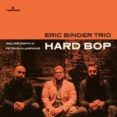 Trane Ride by Eric Binder Trio