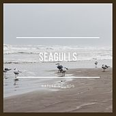Seagulls by Nature Sounds (1)