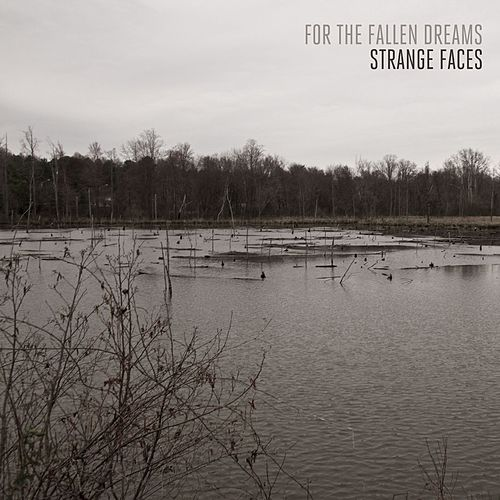 Strange Faces by For The Fallen Dreams