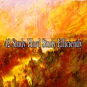 42 Study Hard Study Efficiently by Lullabies for Deep Meditation