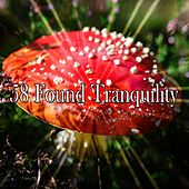 58 Found Tranquility by Ocean Sounds Collection (1)