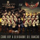 Como Voy a Olvidarme del Rancho de El Loquito del Rancho