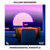 Transcendental Pineapple by William Ogmundson