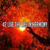 42 Live the Life In Harmony de Lullabies for Deep Meditation