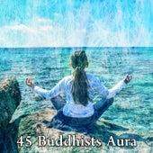45 Buddhists Aura de White Noise Research (1)