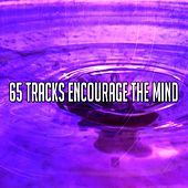 65 Tracks Encourage the Mind by Yoga Music