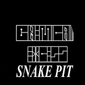 Snake Pit Freestyle by Chemical Excess