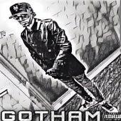 GOTHAM by TG1 Bridge Belvy