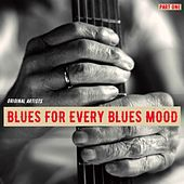 Blues for Every Blues Mood, Part One de Various Artists