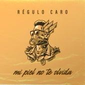 Mi Piel No Te Olvida by Regulo Caro