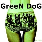 Green Dog by Esteban