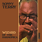 Wizard of the Harmonica by Sonny Terry