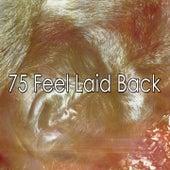 75 Feel Laid Back by Ocean Waves For Sleep (1)