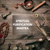 Spiritual Purification Mantras de Various Artists
