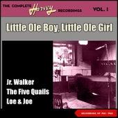 Little Ole Boy, Little Ole Girl - The Complete Harvey Recordings, Vol. 1 (Recordings of 1961 - 1962) de Loe Eddie Burns