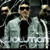Evolution by Kreyol La