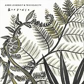 Borjoner by Aimee-Jo Benoit