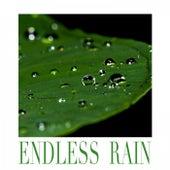 Endless Rain van Rain Sounds (2)