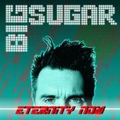 Eternity Now by Big Sugar