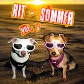 Hit-Sommer, Vol. 6 von Various Artists