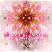 Elements of Nature de Diane Arkenstone