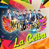 La Ceiba by Mexikolombia