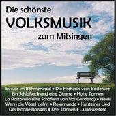 Die schönste Volksmusik zum Mitsingen by Various Artists