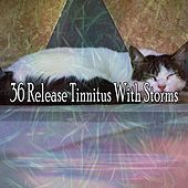 36 Release Tinnitus with Storms by Rain Sounds and White Noise