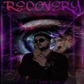 Recovery de NV Ene Uve