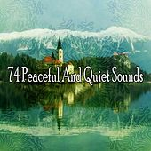 74 Peaceful and Quiet Sounds by Relaxing Music Therapy