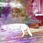 25 Storms to Slay Insomnia by Rain Sounds and White Noise