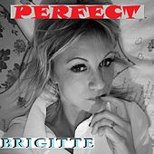 PERFECT (French Cover) by Brigitte