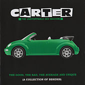 The Good, the Bad, the Average and Unique (A Collection of Besides) de Carter the Unstoppable Sex Machine