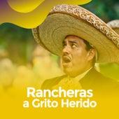 Rancheras a grito herido van Various Artists