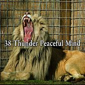 38 Thunder Peaceful Mind by Relaxing Rain Sounds