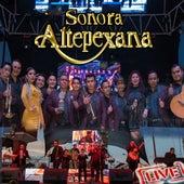 Live de Sonora Altepexana