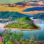 63 Destroy Insomnia by S.P.A