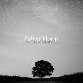 In Abundance by Edgar Hopp