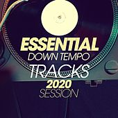 Essential Downtempo Tracks 2020 Session by Moonshine, Cubanitos, Blue Minds, Alan Barcklay, Ariah, Ricky Davies, Lita Brown, Hortuma, Magdaleine, Lawrence, Steve Myler, Florio Chill Project, Alan Barry, Shakiri' Quartet, Mantra