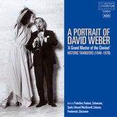 A Portrait of David Weber: A Grand Master of the Clarinet von David Weber