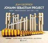 Johann Sebastian Project by Jean Geoffroy