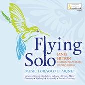 Flying Solo de Janet Hilton