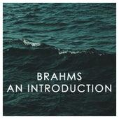 Brahms: An Introduction de 新山恵理