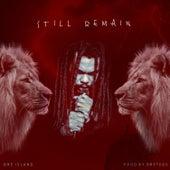 Still Remain by Dre Island