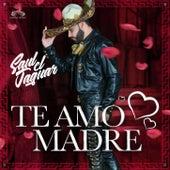 Te Amo Madre by Saul