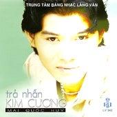 Tra Nhan Kim Cuong by Mai Quoc Huy