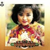 Cuon Theo Chieu Gio de Various Artists