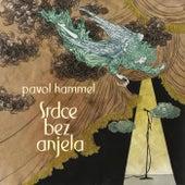 Srdce bez anjela by Pavol Hammel
